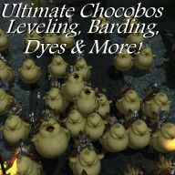Kylie's Ultimate Chocobo Guide